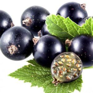 Aroma Grosella Negra y Rosas 30 ml
